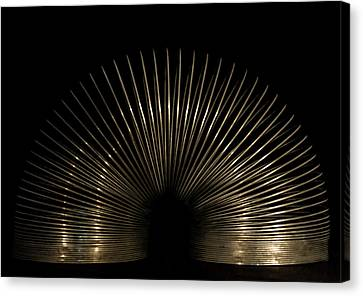 Slinky. Canvas Print by Angela Aird