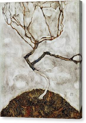 Small Tree In Late Autumn Canvas Print by Egon Schiele