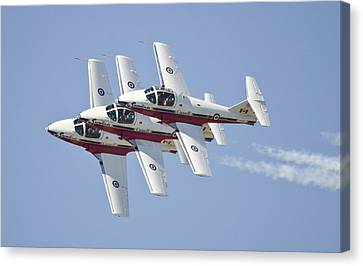 Snowbirds  Canvas Print