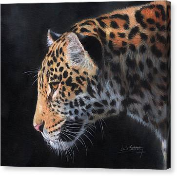 Canvas Print featuring the painting South American Jaguar by David Stribbling