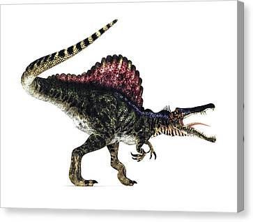 Spinosaurus Dinosaur, Artwork Canvas Print by Animate4.comscience Photo Libary