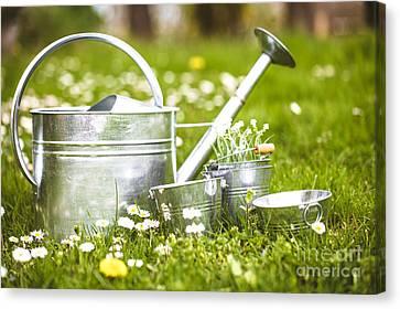 Garden Canvas Print - Spring Garden by Mythja Photography