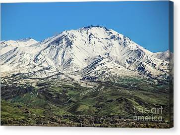 Squaw Butte Canvas Print by Robert Bales