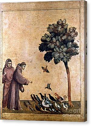 St. Francis Of Assisi Canvas Print