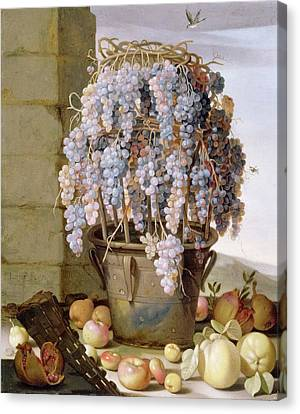 Still Life With Grapes Canvas Print by MotionAge Designs