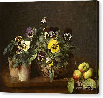 Still Life With Pansies Canvas Print