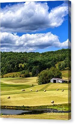 Summer Morning Hay Field Canvas Print