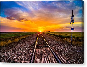 Sun Tracks Canvas Print