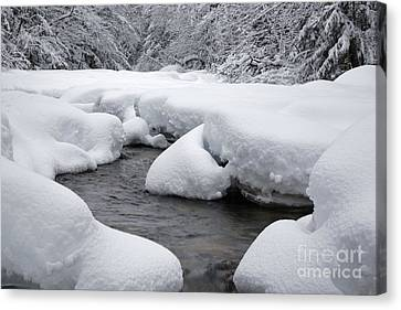 Swift River - White Mountains New Hampshire Usa Canvas Print by Erin Paul Donovan
