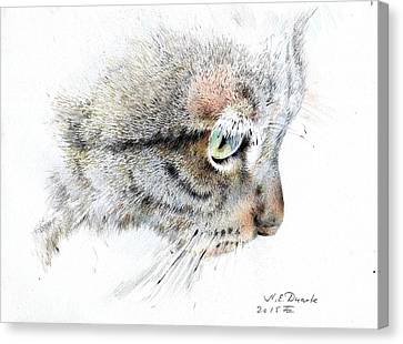 Syomka Canvas Print by Natalia Eremeyeva Duarte