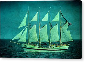 Tall Ships Canvas Print by Bob Nardi