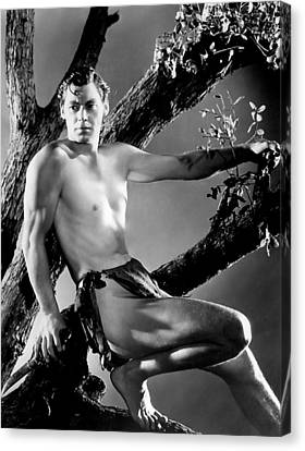 Tarzan, Johnny Weissmuller, 1932 Canvas Print by Everett