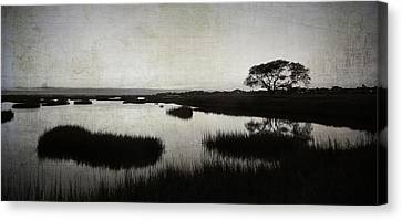 Texas City Wetlands Sunset Canvas Print