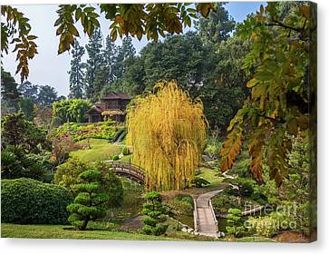 The Beautiful Fall Colors Of The Japanese Gardens In The Hunting Canvas Print by Jamie Pham
