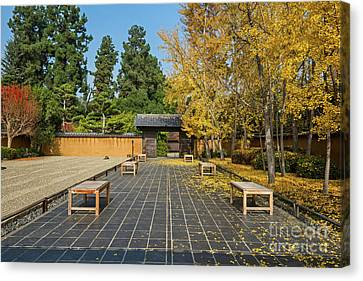 The Beautiful Fall Colors Of The Japanese Gardens Canvas Print by Jamie Pham