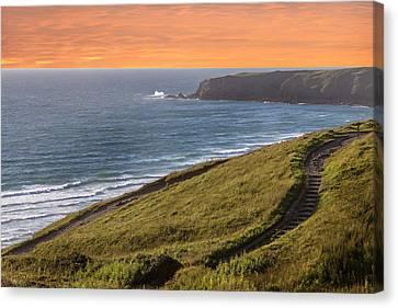 The Cornish Coast Canvas Print by Martin Newman