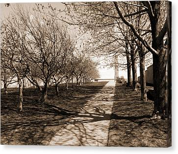 The Path Canvas Print by Robert Knight