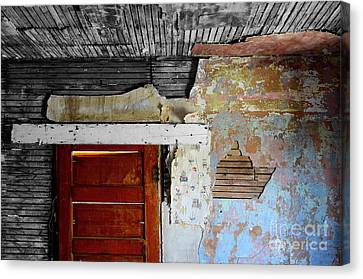 The Wall Canvas Print by Bob Christopher