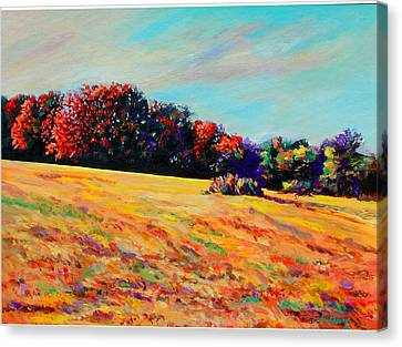 Tomorrow Afternoon Canvas Print by Richard Knox