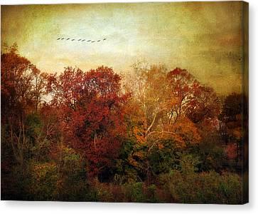 Treetops Canvas Print by Jessica Jenney