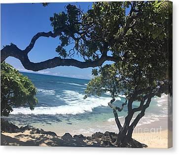 Canvas Print - Tropical Paradise by Karen Nicholson