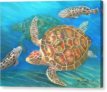 Turtle Collage Canvas Print by Eleonora Mingazova