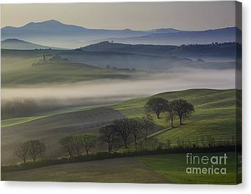 Tuscan Dawn Canvas Print by Brian Jannsen