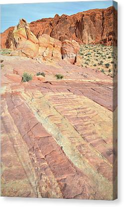 Canvas Print featuring the photograph Valley Of Fire Rainbow by Ray Mathis