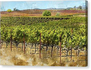 Vineyard In Napa Valley California In Autumn Canvas Print