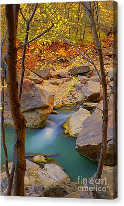 Virgin River In Autumn Canvas Print by Dennis Hammer
