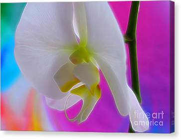 Vivid Joy Canvas Print