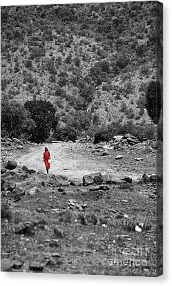 Canvas Print featuring the photograph Walk  by Charuhas Images