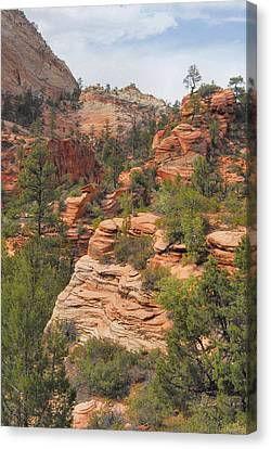 West Zion Landscape Canvas Print by Stephen  Vecchiotti
