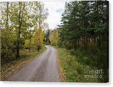 Canvas Print featuring the photograph Winding Gravel Road by Kennerth and Birgitta Kullman