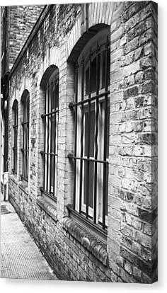 Cellar Canvas Print - Window Bars by Tom Gowanlock