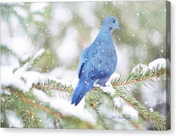 Winter Birds Canvas Print by Jill Wellington