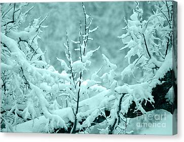 Winter Wonderland In Switzerland Canvas Print by Susanne Van Hulst