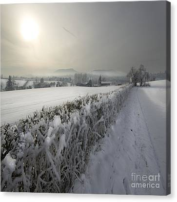 Wintery Landscape Canvas Print by Angel  Tarantella