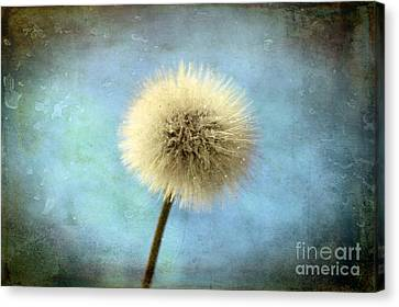 Floral Digital Art Canvas Print - Wish Of A Lifetime by Krissy Katsimbras