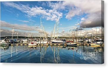 Yachts Canvas Print by Svetlana Sewell