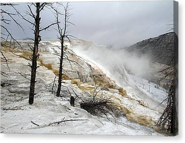 Yellowstone Mammoth Hot Springs Canvas Print by Pierre Leclerc Photography