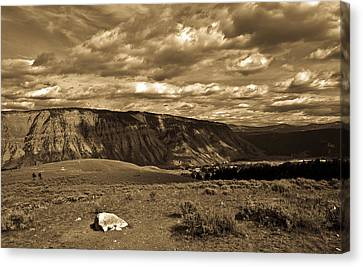Yellowstone Sky Canvas Print by Patrick  Flynn