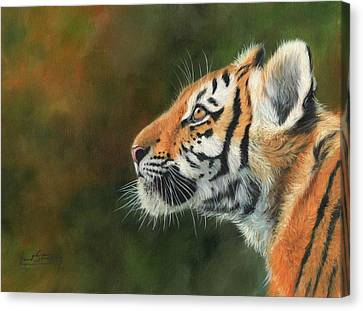 Canvas Print featuring the painting Young Amur Tiger  by David Stribbling