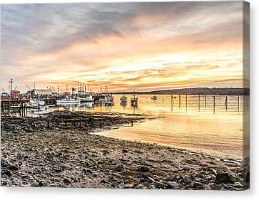 2015 Christmas Sunrise In Rockland Canvas Print
