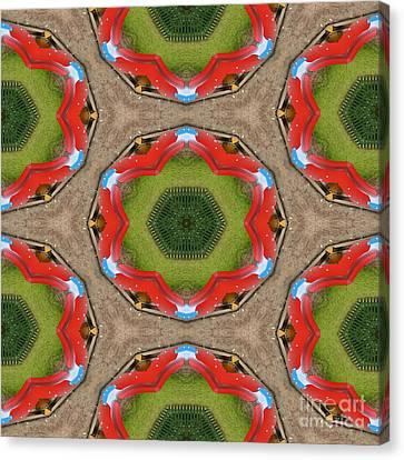 Kaleidoscopic Ornaments Canvas Print by Miroslav Nemecek