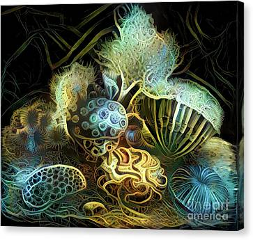 Sea Creatures Canvas Print - Beautiful Undersea Coral by Amy Cicconi