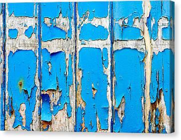 Blue Wood Canvas Print by Tom Gowanlock