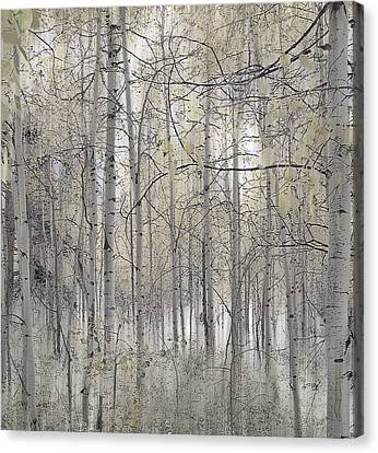 238 Canvas Print