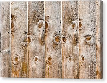 Fence Panels Canvas Print by Tom Gowanlock