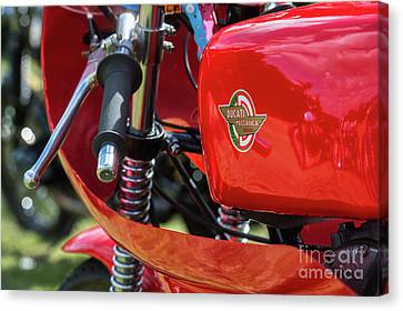 250cc Racer Canvas Print by Tim Gainey